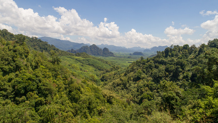 Aerial view of tropical green rain forest landscape in Thailand during sunny summer day