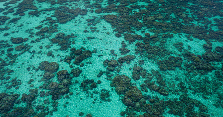 Aerial drone top view of the crystal clear lagoon sea water surface with coral reef