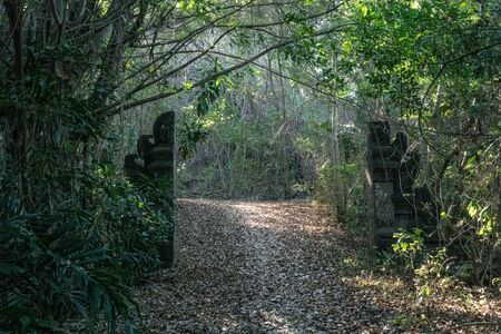 Magical old gate to the secret garden