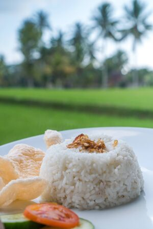 Steamed rice with prawn crackers and vegetables on white plate over blurred rice fields background Фото со стока
