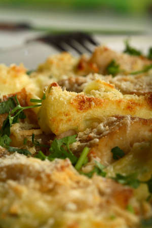 european cuisine: Scorched fish with potatoes mousse