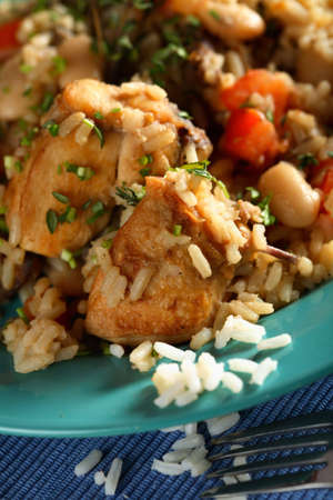 fricassee: Fricassee with chicken