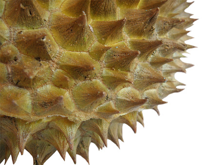 King of fruits, durian on white background