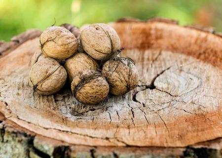 pile of walnuts on cut wood Standard-Bild