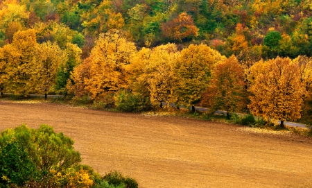 Autumn landscape with countryside views of Preslav