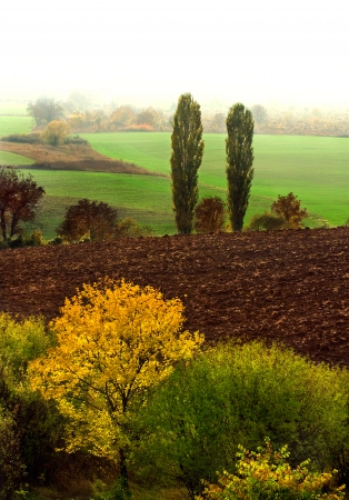 Autumn landscape with fog,  with countryside views of Preslav. Bulgaria