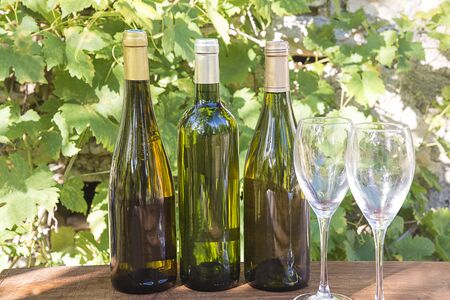 Three bottles of white wine and two glasses Banque d'images