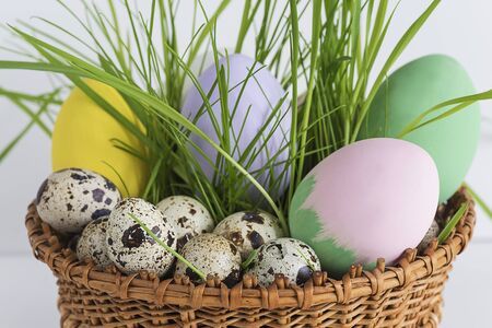 easter concept with quail eggs Banque d'images