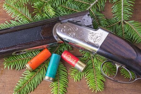 Hunting rifle and sockets Banque d'images
