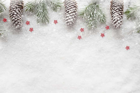 Christmas background. Snow Fir tree branch, red berries on white background isolated. Top view with copy space.