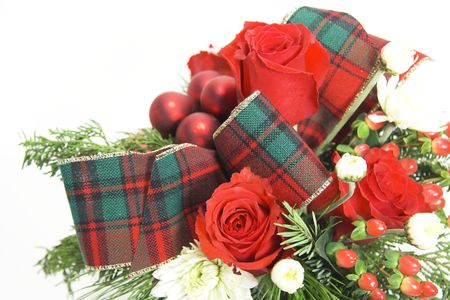 Holiday flowers isolated against a white background photo