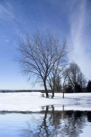 Frozen landscape with lake reflecting tree Stock Photo - 2538916