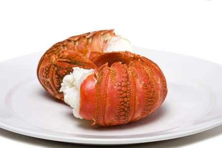 Fresh cooked lobster tails on a white plate photo