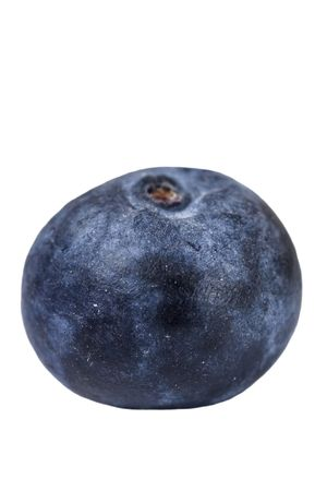 One blueberry with a shallow depth of field photo