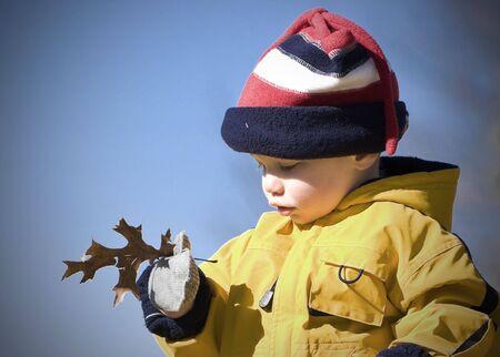 Boy outside examining a leaf 写真素材
