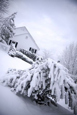 Traditional American colonial style house in winter Stock Photo - 3264253