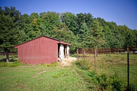 Old run down wooden barn in front of trees and fence Stock Photo - 3698617