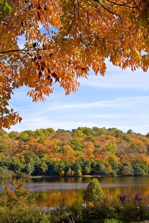 reflect: Scenic scene with autumn trees set against a wooded lake