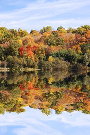 Scenic scene with autumn trees set against a wooded lake Stock Photo - 3732946