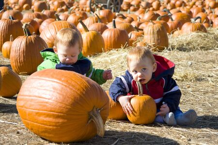 Happy twin boys at a pumpkin patch having fun Stock Photo - 3803997