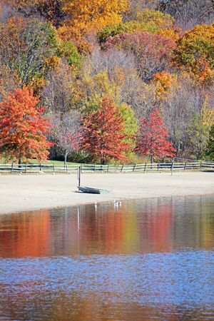 Small boat on beach with beautiful fall trees photo