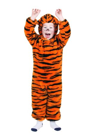 Young boy in a Halloween tiger costume 免版税图像 - 8169183