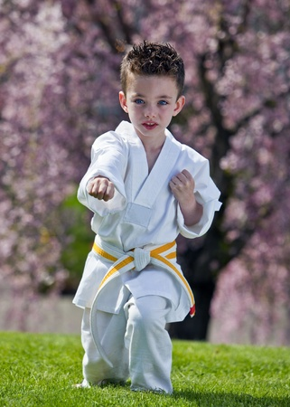 Young boy practicing martial arts outside in spring 免版税图像
