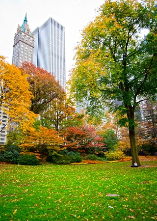 Central park in New York city during the fall