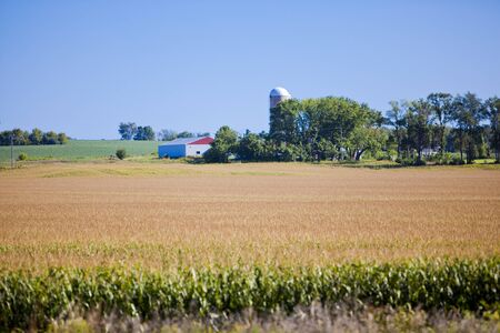 American Country Farm With Blue Sky Stock Photo - 15802911