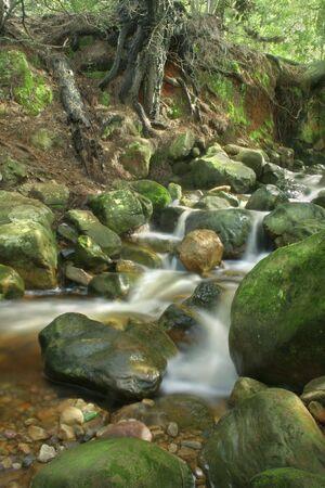 newlands: A river scene