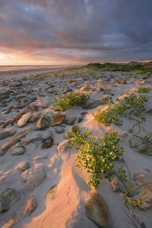 desolate: Low light hitting a desolate beach