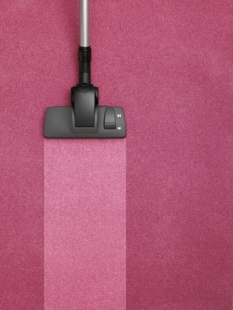 Vacuum Cleaner cleaning the carpet photo