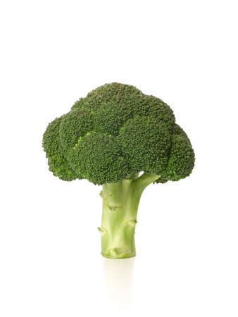 brocolli: Brocolli Isolated