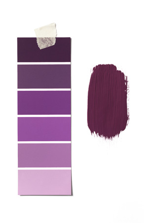 paint swatch: Isolated Paint Swatch and sample
