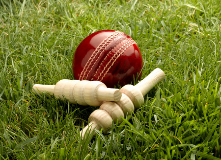 Red Leather Cricket Ball with Bailes