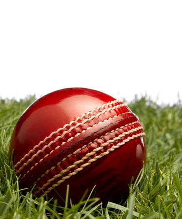 cricket ball: Cricket ball on grass Stock Photo