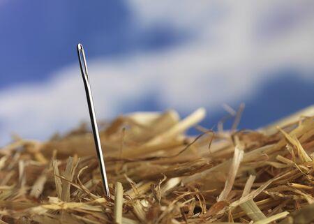 Macro shot of Needle photo