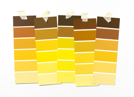 paint swatch: Yellow Paint swatch on wall