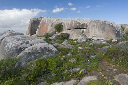 Boulder at Posberg Nature Reserve, South Africa Stock Photo