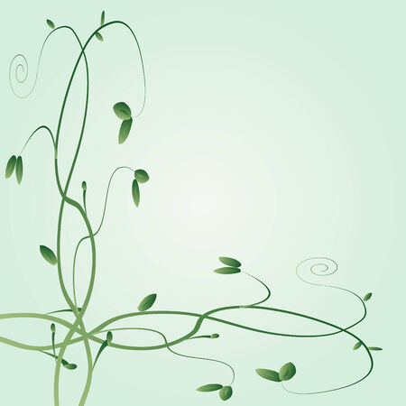 Floral vines on a green background Illustration