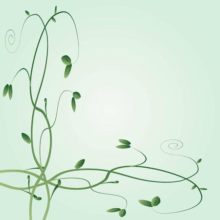Floral vines on a green background Illustration