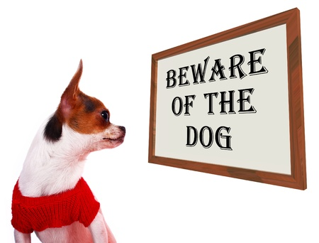 Beware Of The Dog Sign Shows Protection And Warning photo