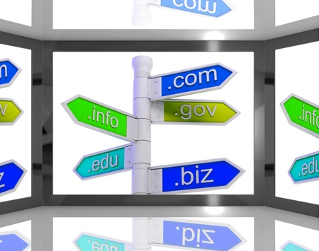 domains: Domains On Screen Showing Internet Domains And Online Information