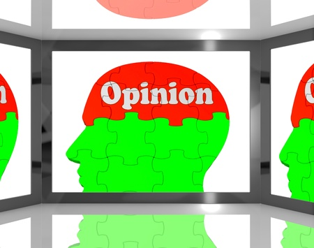 Opinion On Brain On Screen Showing Personal Opinion And Judgment Stock Photo - 16936530