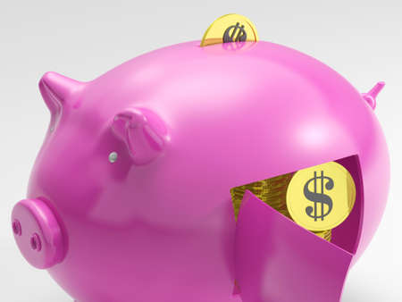 Dollar In Piggy Showing Currency And Investment In America Stock Photo - 18271355