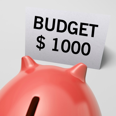 limitations: One Thousand dollars, usd Budget Shows Limitations Or Savings