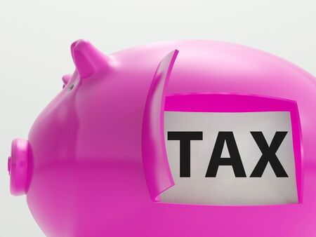 excise: Tax In Piggy Showing Taxation Savings Taxpayer Stock Photo