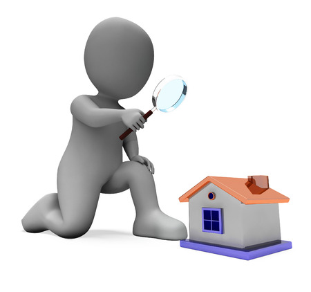 Home Inspection: House Character Showing Inspect Surveying Searching Or Looking For Home