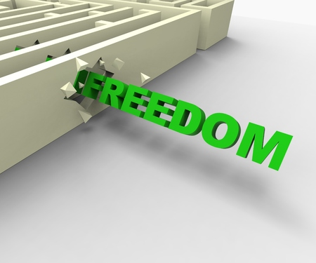 jailbreak: Freedom From Maze Shows Liberated Or Escape
