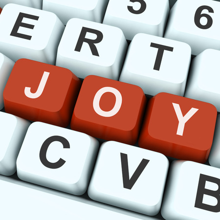 joyousness: Joy Key Meaning Enjoy Fun Or Happy  Stock Photo